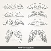 Wings collection — Stock Vector