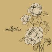 Beautiful romantic roses — Stock Vector