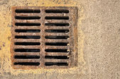 Sewer grill — Stock Photo