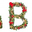 Royalty-Free Stock Photo: Christmas letters