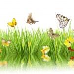 Spring concept — Stock Photo #16323549