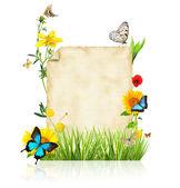 春天的概念 — 图库照片