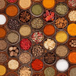 Spices collection — Stock Photo #18460429