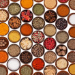 Spices collection - Stock Photo