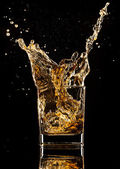 Bere whisky — Foto Stock