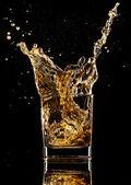 Whiskey drink — Stock Photo