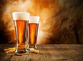 ビール — ストック写真