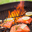 Grilled salmon — Stock Photo #28148935
