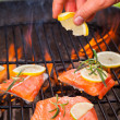 Grilled salmon — Stock Photo #28149103