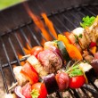 Grilled skewer — Stock Photo #28479851