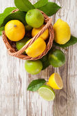 Fresh lemons — Stock Photo