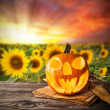 Halloween pumpkin — Stock Photo #32718611