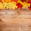 Autumn leaves — Stock Photo #33680871