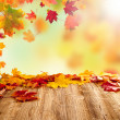 Autumn leaves — Stock Photo #33681843