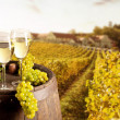 Wine with vineyard on background — Foto de stock #33990651