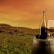 Wine with vineyard on background — Stock Photo
