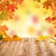 Autumn leaves — Stock Photo #34168447