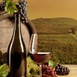 Wine in vineyard — Stock Photo #34572135