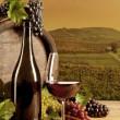 Wine in vineyard — Stock Photo