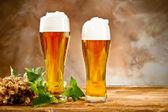 Beer still life — Stock Photo