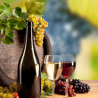 Wine in vineyard — Stock Photo #35345181