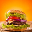 Fresh hamburger — Stock Photo