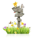 Spring concept with sign post — Stock Photo