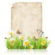 Spring concept with blank paper — Foto Stock