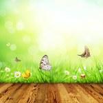 concetto di primavera con tavole di legno — Foto Stock