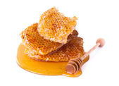 Honeycomb, isolated on white background — Stock Photo