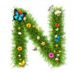 """Spring letter """"N"""" — Stock Photo #41296431"""