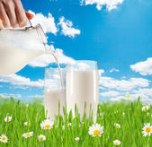 Milk pouring into glass in grass — Stock Photo