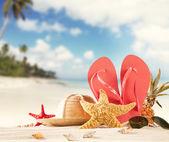 Sandy beach — Stock Photo
