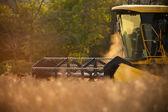 Harvester — Stock Photo
