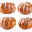 Pumpkin collection isolated on white backgroun — Stock Photo #51620357