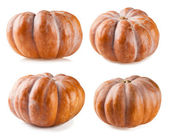 Pumpkin collection isolated on white backgroun — Stock Photo
