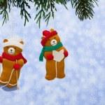 Winter Bears — Stock Photo #11809686