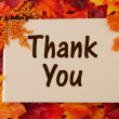 Thank You card with fall leaves — Stock Photo