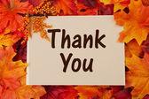 感谢您的卡片与秋天叶子 — 图库照片