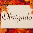 Obrigado card with fall leaves — Stock Photo