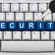 Online Security — Stock Photo #27080363