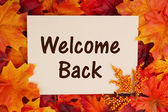 Welcome Back card with fall leaves — Stock Photo