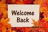 Vítáme vás zpět kartu s podzim listí — Stock fotografie