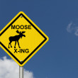 Use caution moose are present — Stock Photo