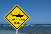 Use caution when surfing because sharks are present — Stockfoto