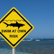 Use caution when swimming because sharks are present — Foto Stock