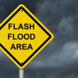 Stock Photo: Flood Warning