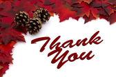 Autumn Time Thank You — Stock Photo