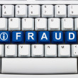 Getting information about Online Fraud — Стоковая фотография