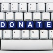 Making Donations on the Internet — Stock Photo